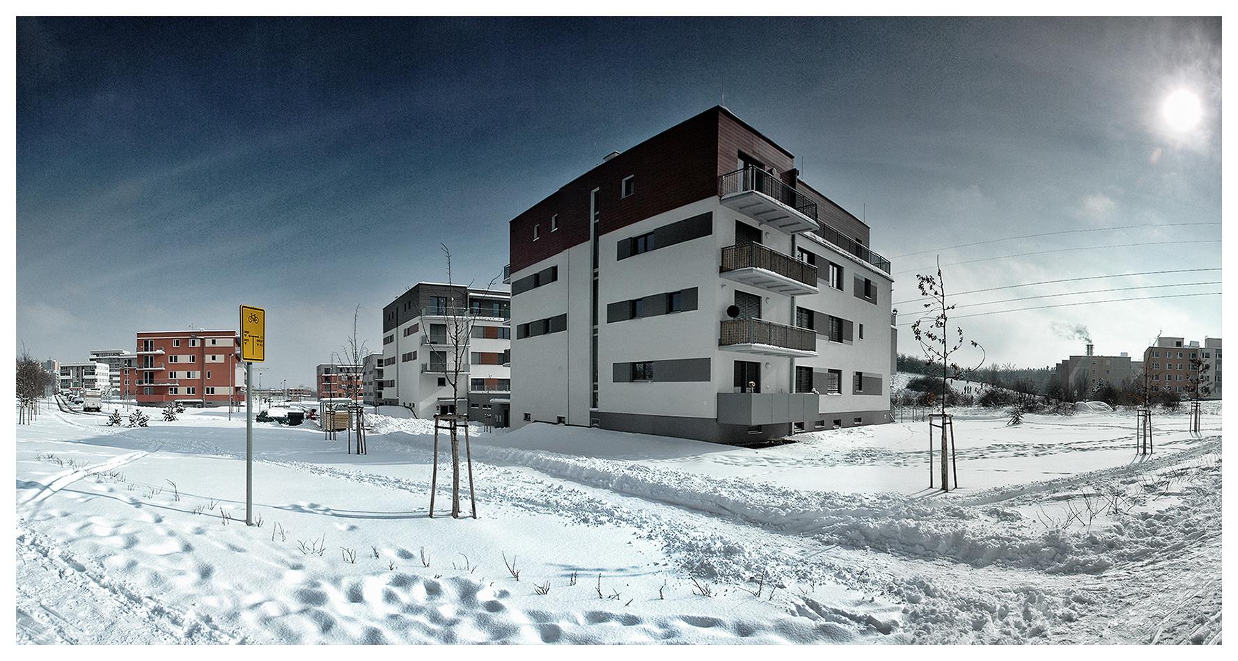 Milíčovský háj - Praha 4 - Zima 2013